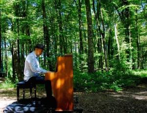 concert de piano dans la foret